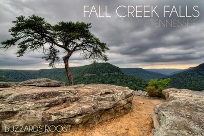 Fall Creek Falls State Park, Tennessee - Buzzards Roost