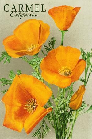Carmel, California - State Flower - Poppy Flowers