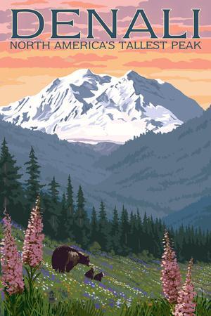 Denali, Alaska - North Americas Tallest Peak - Bears and Spring Flowers
