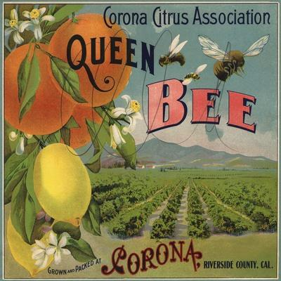 Queen Bee Brand - Corona, California - Citrus Crate Label
