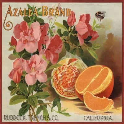 Azalea Brand - California - Citrus Crate Label