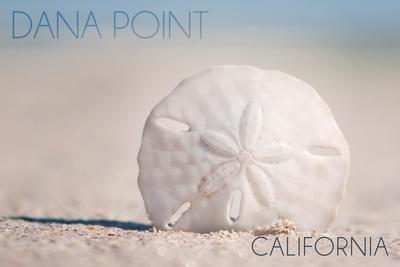 Dana Point, California - Sand Dollar and Beach