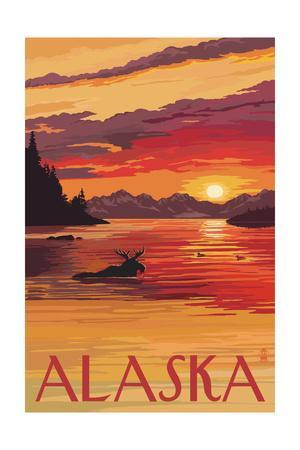 Alaska - Moose Swimming and Sunset