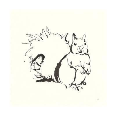 Line Squirrel