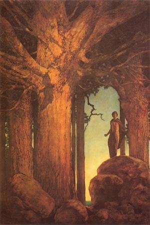Jason and the Talking Oak