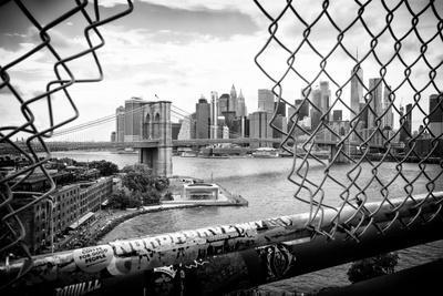 Black Manhattan Collection - Through the Fence