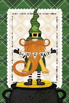 St. Patrick's Gnome