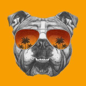 original drawing of english bulldog with mirror sunglasses isolated on colored backgroundvictoria_novak