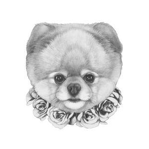 original drawing of pomeranian dog with roses isolated on white backgroundvictoria_novak