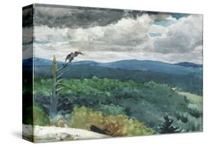 Hilly Landscape, 1894 by Winslow Homer
