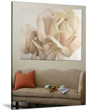 Romantic White Rose by Yvonne Poelstra-Holzaus